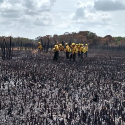 Un 70% del incendio en la Reserva de Sian Ka'an ya está controlado, confirma la Conafor