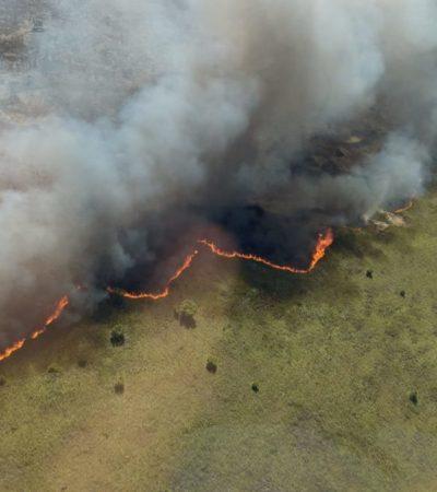 Incendio en Sian Ka'an se convierte en grande riesgo para brigadistas, afirma Arturo Abreu