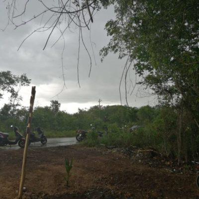 Lluvia en José María Morelos alivia a comunidades que eran afectadas por la sequía