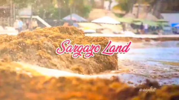 Difunden video parodia sobre la crisis del sargazo en el Caribe mexicano