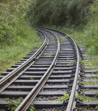 '¿Quién les pidió un tren?'… cuestionan activistas de la Península