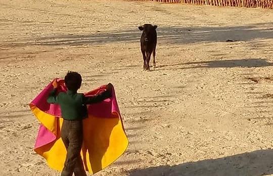 ESPECIAL | LA GENTE LE AGARRÓ GUSTO A LAS CORRIDAS… Y A LA COMIDA: La fiesta de los toros, más que un espectáculo en la tradición maya