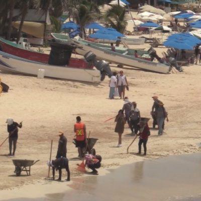 Justifica Ulises Gavia que sólo la mitad de personal operativo de Zofemat limpie playas en Solidaridad