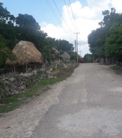 Por pugnas de vecinos, detienen programa de avistamiento de aves migratorias en José María Morelos