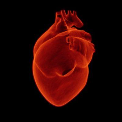 Una tercera parte de los mexicanos muere por una enfermedad cardiovascular