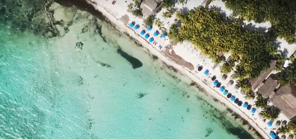 Conoce 10 playas que están libres de sargazo en Quintana Roo