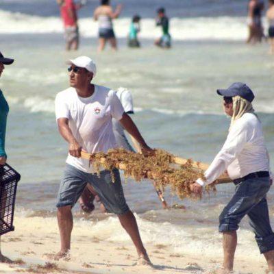Considera el Gobernador que se tienen buenos resultados con la instalación de barreras antisargazo en Playa del Carmen, Puerto Morelos y Tulum