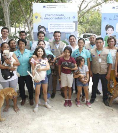 Gobierno de Cozumel pone en marcha la Campaña de Bienestar Animal y un censo de mascotas