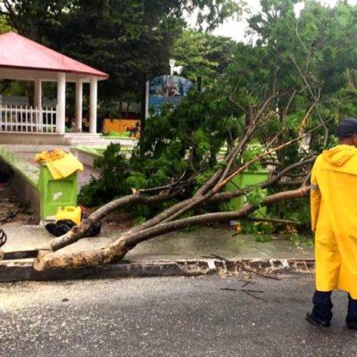 """Activan """"Operativo Tormenta"""" en Puerto Morelos ante contingencia por lluvias"""