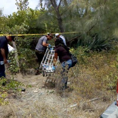 Hallan tres cuerpos en zona de manglar en Isla Blanca; podría tratarse de trabajadores desaparecidos