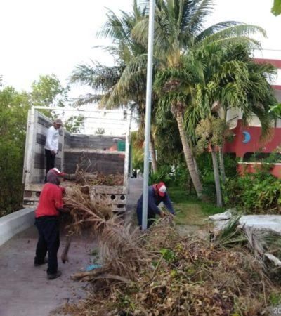 Realizan trabajo de mantenimiento en parques y jardines de Isla Mujeres