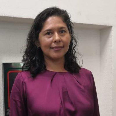 Linda Cobos asegura que fracción parlamentaria de Morena está definiendo el trabajo que realizarán cuando tomen protesta