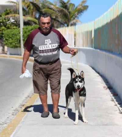 Se suman isleños al programa del Ayuntamiento 'tu mascota, tu responsabilidad'