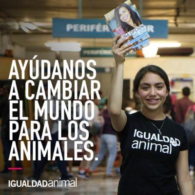 Activistas de Cancún y Playa del Carmen se interesan en promover el movimiento 'Libre de Jaulas' para concientizar a empresas sobre el bienestar animal