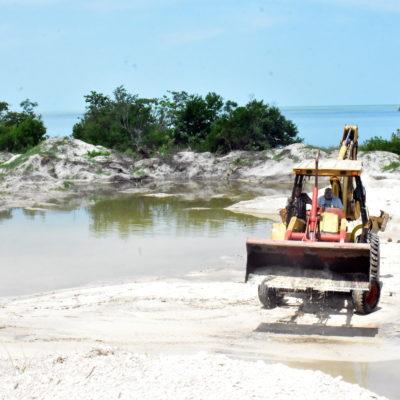 ACUSAN ECOCIDIO EN CAMPECHE: Denuncian a empresario por devastar 43 hectáreas para construir un hotel en apenas una hectárea en Champotón