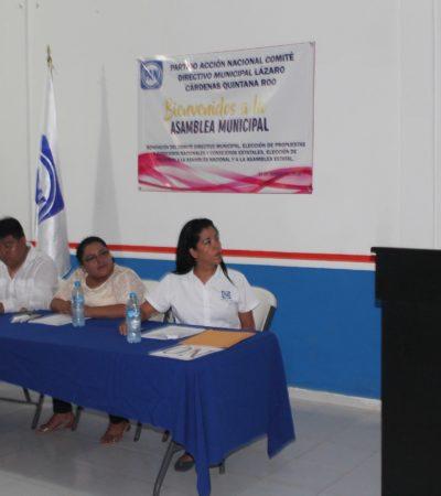 Elige PAN a su dirigente en Lázaro Cárdenas