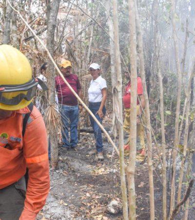 Detectan llantas en incendio forestal de Solidaridad