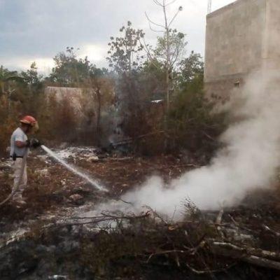 Gobierno de Tulum congela expedición de licencias de construcción en predios que fueron incendiados