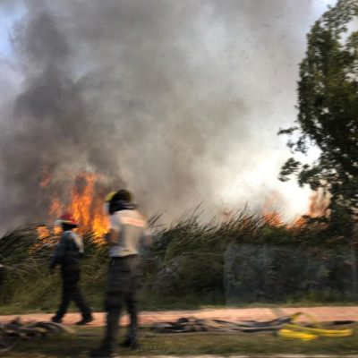 Surge incendio en la sabana de Chetumal