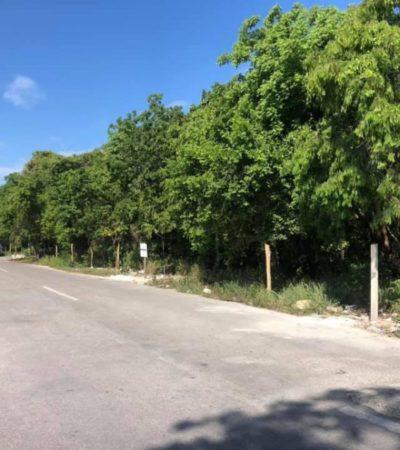 Invaden terreno de la Agencia Estatal de Proyectos Estratégicos de QR en Cozumel