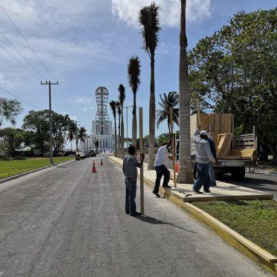 LEVANTA PROCURADURÍA AMBIENTAL ACTA POR TALA DE ÁRBOLES Y MANGLE: Trabajan a marchas forzadas para habilitar la Megaescultura antes del Tercer Informe de Gobierno