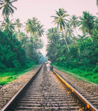 Acumula Tren Maya bolsa de 5 mil 510 mdp