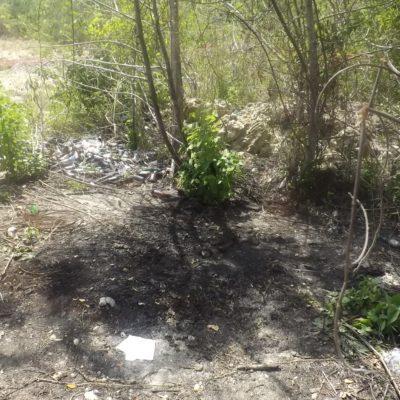 Hallan dos osamentas en zona rural de Othón P. Blanco