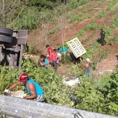 MARTES DE LECHE Y LICORES… GRATIS: Rapiñan en Tenabo, Campeche, carga de tráileres accidentados