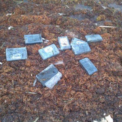 RECALAN 5 MDP EN COCAÍNA EN PUERTO MORELOS: Hallan entre el sargazo 19 paquetes de droga con un peso de 21 kilos