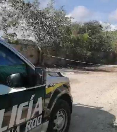 Hallan cuerpo descuartizado en camino de terracería de la SM 104 en Cancún