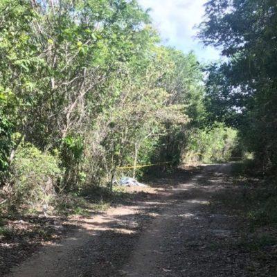 Localizan dos cuerpos sin vida en cenote durante búsqueda de ciclistas desaparecidos en Cancún