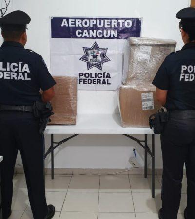 Procedente de Jalisco, incautan cargamento de 30 kilos de mariguana en empresa de mensajería en Cancún