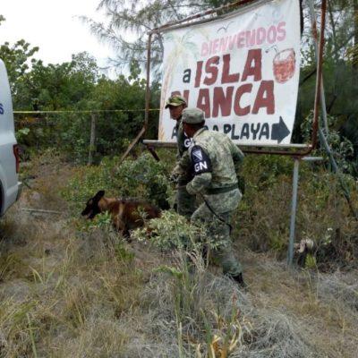 Identifican a las tres personas localizadas sin vida por la Policía Ministerial, el pasado sábado en la zona continental de Isla Mujeres