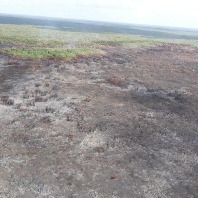 INFORME FINAL DEL INCENDIO EN SIAN KA'AN: Afectadas 3 mil 100 hectáreas por siniestro en la reserva