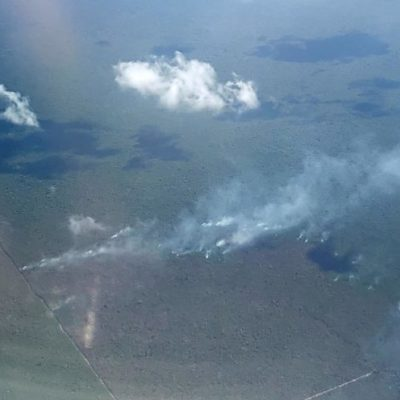 Incendio en zona de selva del municipio de Benito Juárez afecta con humo a Puerto Morelos