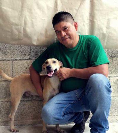 El amor y respeto por los animales ha permitido que integrantes de la fundación 'Esteriliza, Rescata y Adopta' salven a perros en condición de calle en Cancún