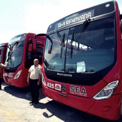 Empresas de transporte público dan banderazo de salida a 43 nuevas unidades en Cancún
