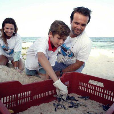 Participan Pedro Joaquín y su familia en la primera liberación de crías de tortuga marina de este año en Cozumel
