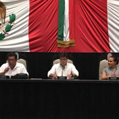 Rompeolas: 'Verdes' (ahora 'Kiwis') y PT, los principales 'ganones' de las pugnas en Morena