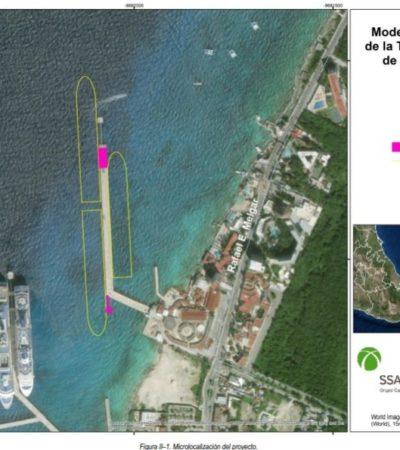 Semarnat rechaza ampliación de terminal de SSA que permitiría atracar cruceros de mayor tamaño a los actuales en Cozumel