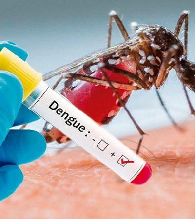 Confirman tres decesos por dengue hemorrágico en la Zona Norte de Quintana Roo