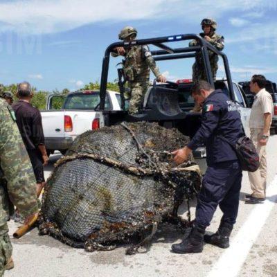Ejército y Marina aseguran importante cargamento de droga hallado debajo de una boya en la playa Punta Chiqueros en Cozumel