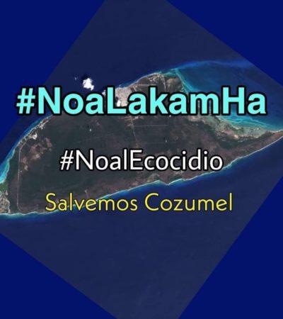 SE LANZA PERLA TUN CONTRA PROYECTO DE GREG EN COZUMEL: Regidora hace campaña contra la construcción del complejo turístico Lakam-Ha