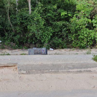 Hallan huesos humanos en Playa del Carmen