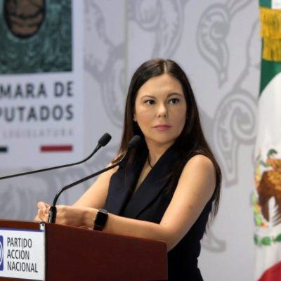 Rechaza el pleno a panista Laura Rojas para presidir la Cámara de Diputados