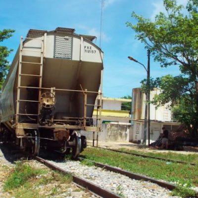 Tramo de Palenque a Valladolid ya existente se concesionará al Tren Maya