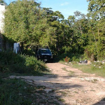 Encuentran cuerpo desmembrado en la SM 248 de Cancún
