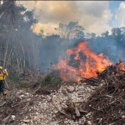 ATRASO DE LLUVIAS ALARGÓ TEMPORADA DE INCENDIOS FORESTALES: Monitorean 11 puntos de calor susceptibles de provocar siniestros en Quintana Roo