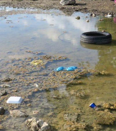 Falta de cultura ambiental y contaminación afectan a cuerpo lagunar en la zona irregular 'El Milagro', en Cancún