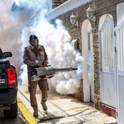 Refuerzan fumigación contra el mosquito transmisor del dengue, zika y chikungunya en Isla Mujeres